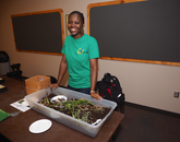 UA graduate student Chioma Oringanje of the UA's Insect Discovery program helps with the hands-on activities.