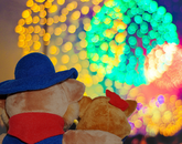 Wilbur and Wilma Wildcat ring in the new year with a bang.