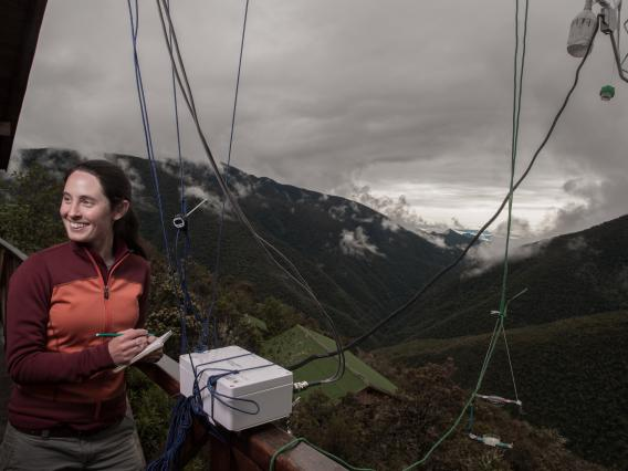UA assistant professor Rachel Gallery samples for bacteria and fungi. Research showed that microbes mostly move on air currents at dawn and dusk.
