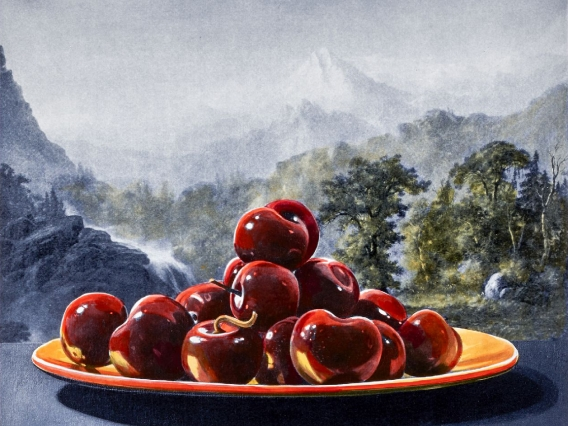 Plate of red apples sitting in front of a mountainscape