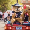 Wilbur and Wilma T. Wildcat sitting on a car