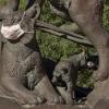 wildcat statue wearing masks