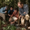 UArizona research faculty and students collect samples in Pasi Peru.