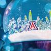 block A and cactus in a snowglobe