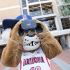 UArizona mascot Wilbur Wildcat looks through a virtual reality headset