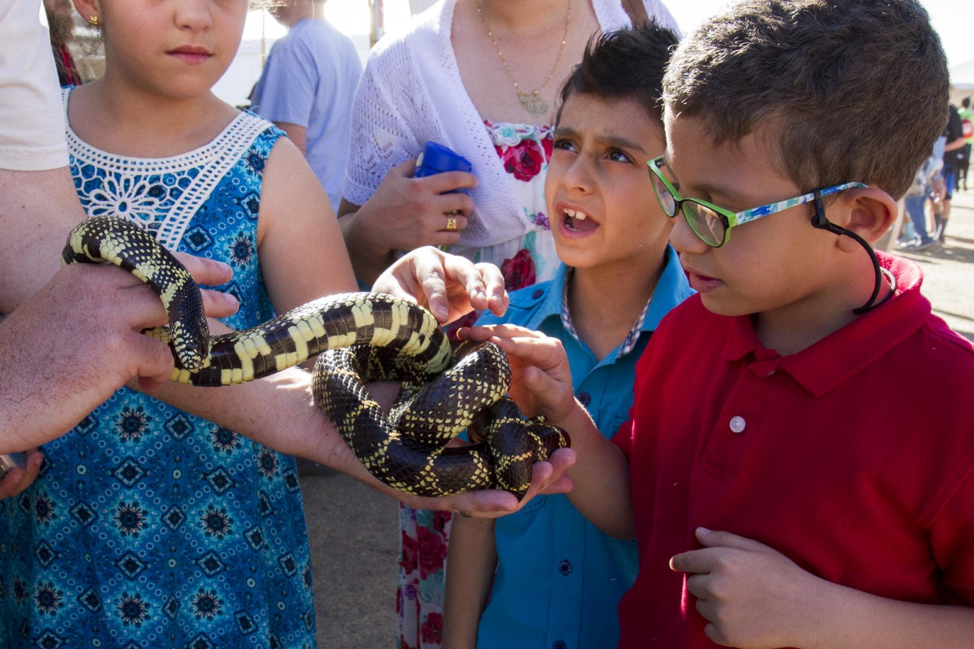 Yousif Mustafa and Yousif Darweesh with a friendly king snake