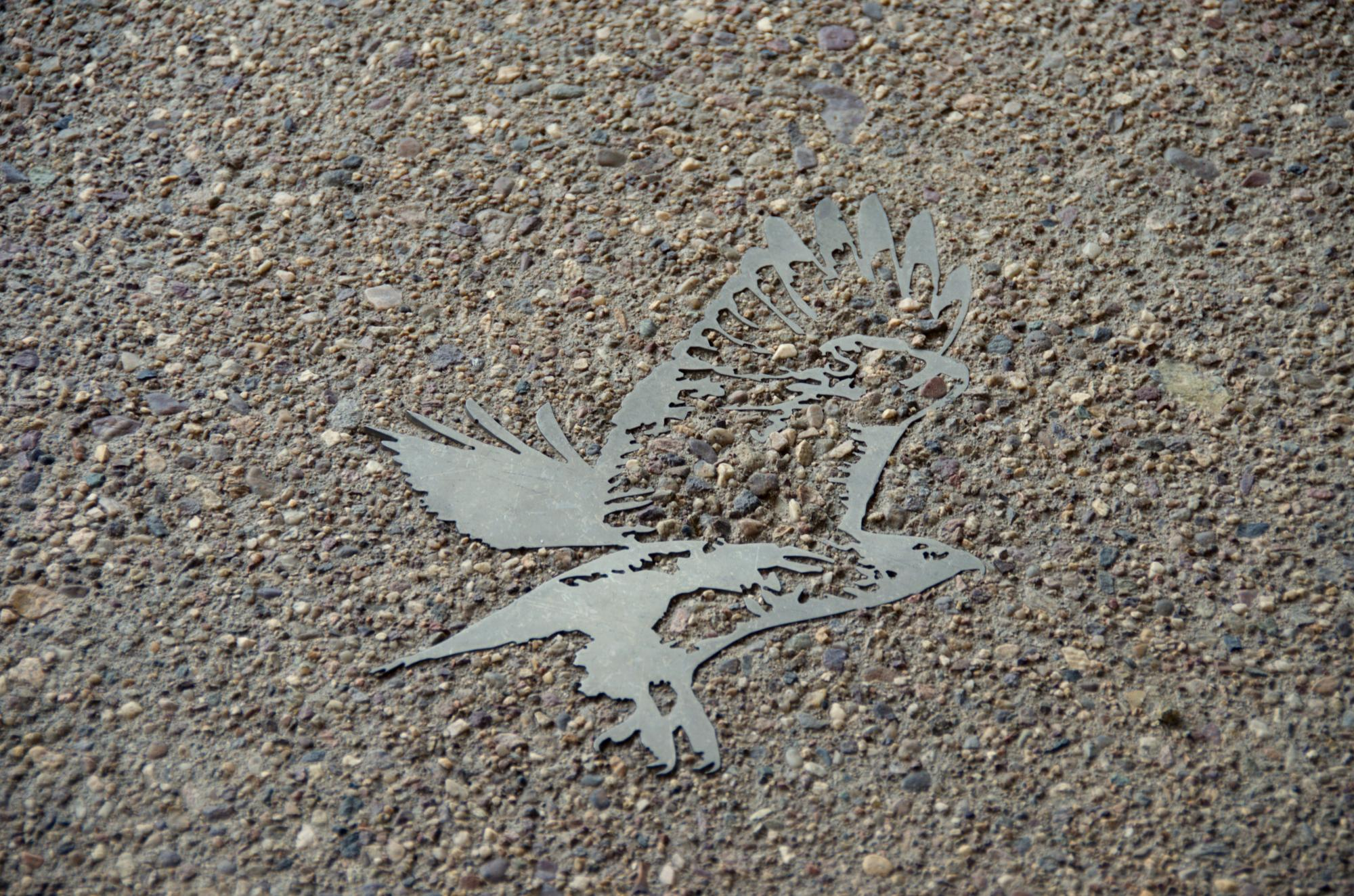 Located at the ENR2 building are metal inlays of Gila monsters, desert tortoises, hummingbirds, bobcats, vermilion flycatchers and pupfish.
