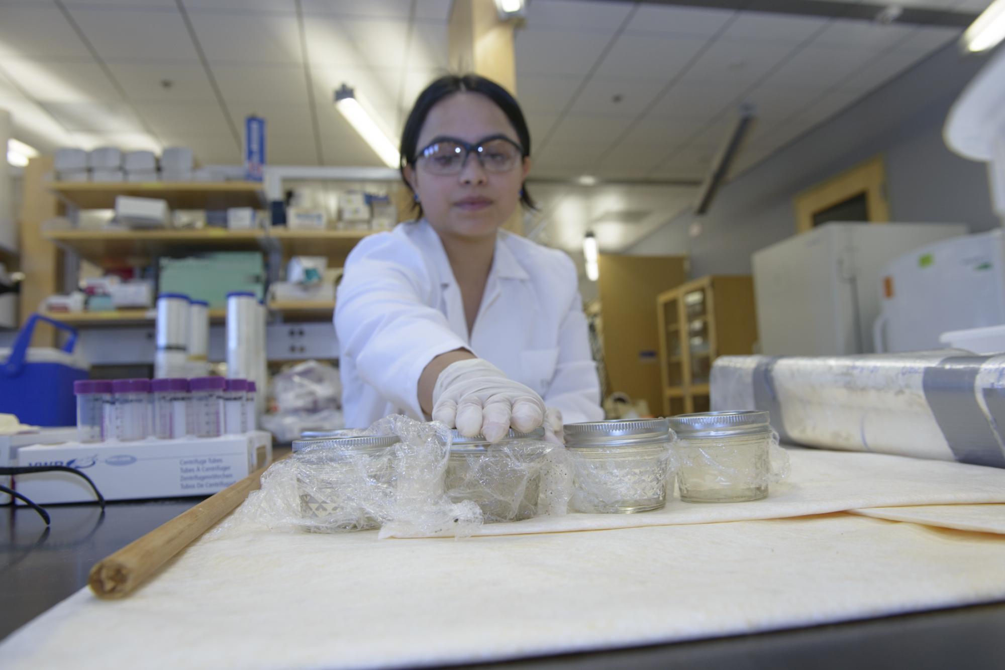 Yoshira Ornelas Van Horne inspects water samples.