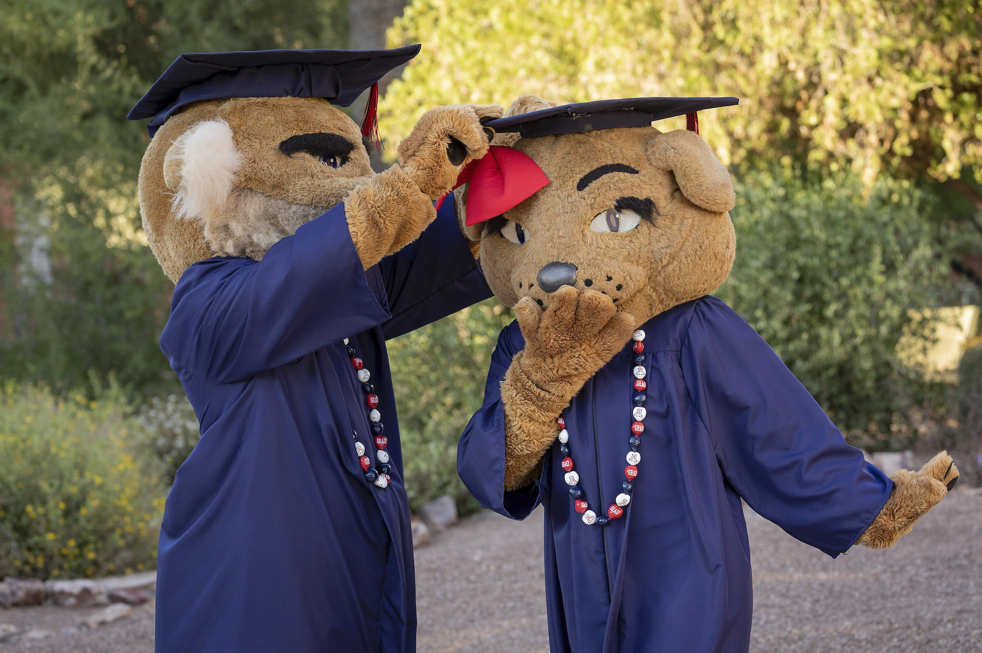 University mascots Wilbur and Wilma during filming for the virtual 2020 Commencement ceremony.