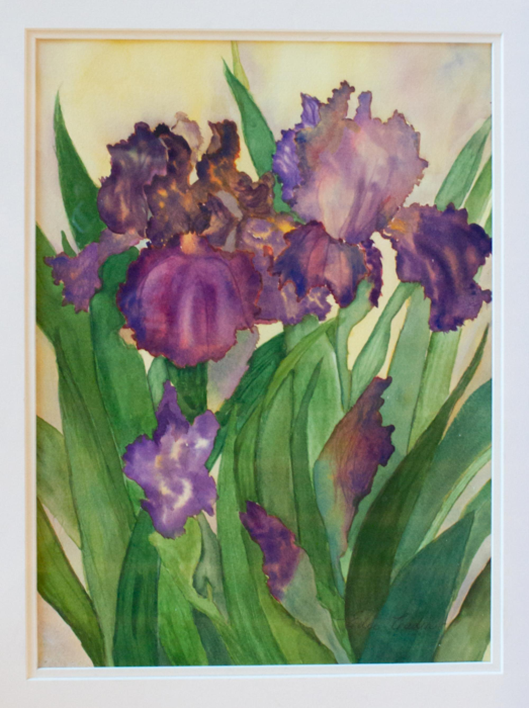 """Purple Irises"" by Edee Cadin, family of Sean Cadin, senior business manager at the BIO5 Institute, won first place in the amateur category."