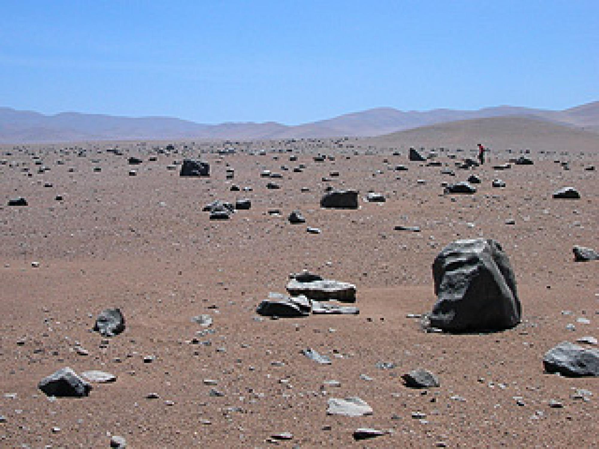 Although the Mars-like landscape of the Atacama desert's vegetation-less core gets rain maybe once a decade, the soil harbors microbial life eight to 12 inches below the parched surface. UA geoscientist Jay Quade can be seen in the distance. Photo cr