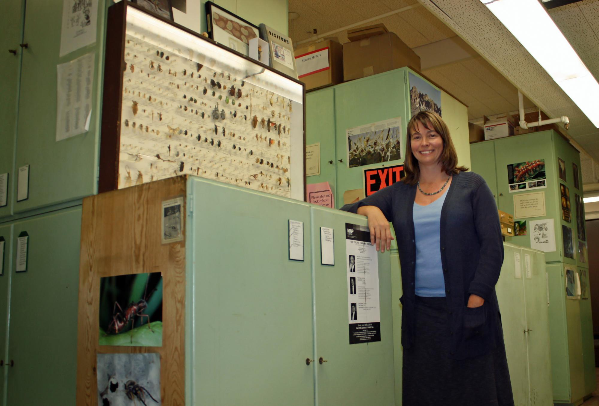 Wendy Moore, an assistant professor in the UA Department of Entomology, has been working to revitalize and better preserve the University's Insect Collection.