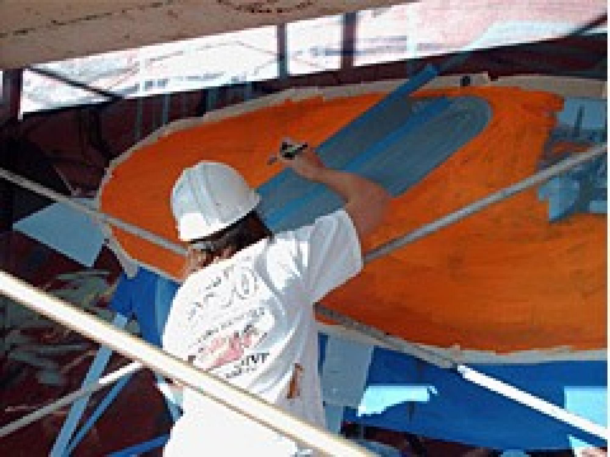 UA senior art student Bonnie Streff paints the Phoenix Mars Lander that is part of the mural on the mission's Science Operations Center in Tucson.