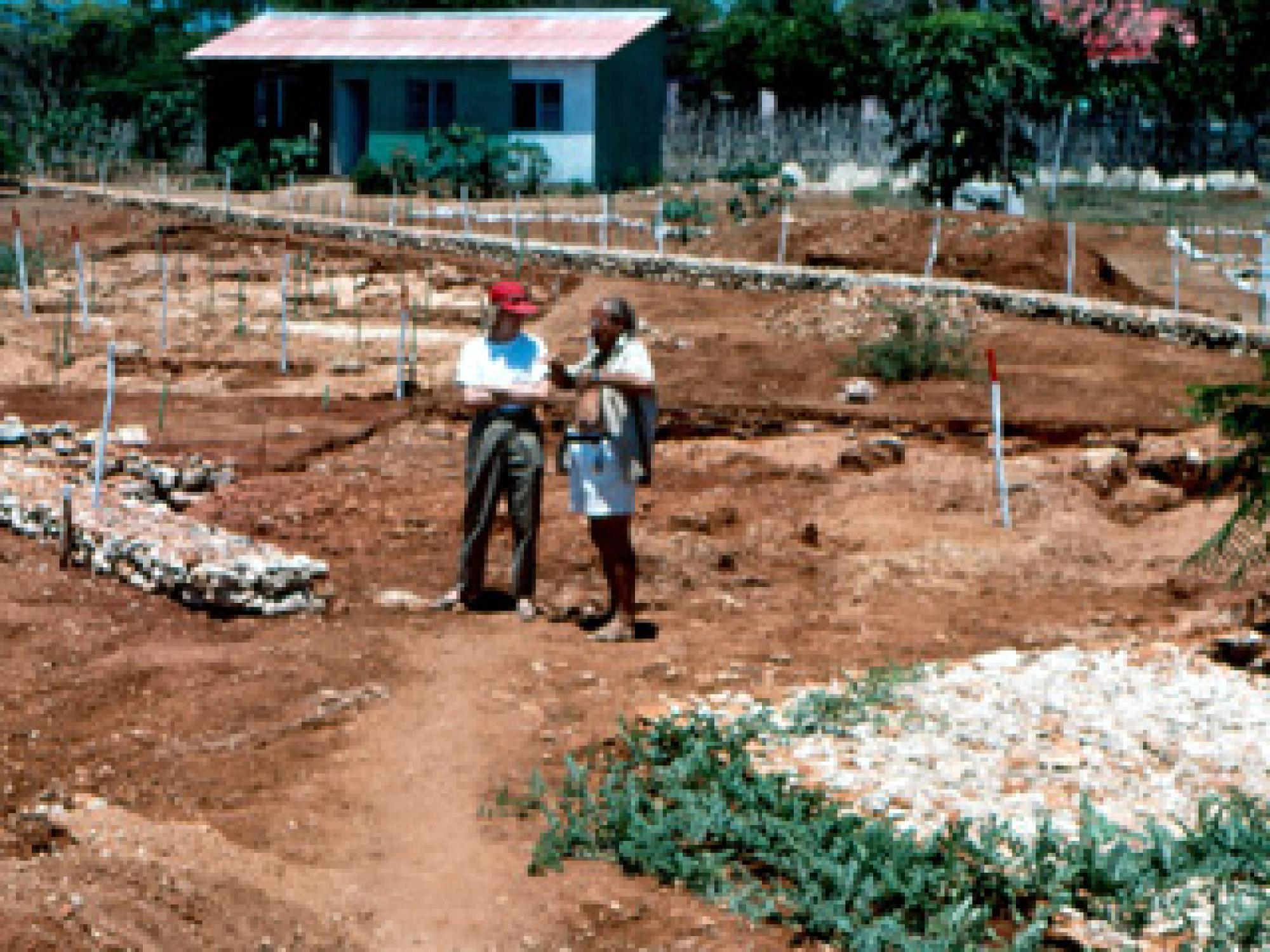 Co-authors Kathleen Deagan and Jose M. Cruxent standing by the foundations of La Isabela's storehouse, where metallurgical activities took place. Photo: Copyright 1998. James Quine, Florida Museum of Natural History, University of Florida.