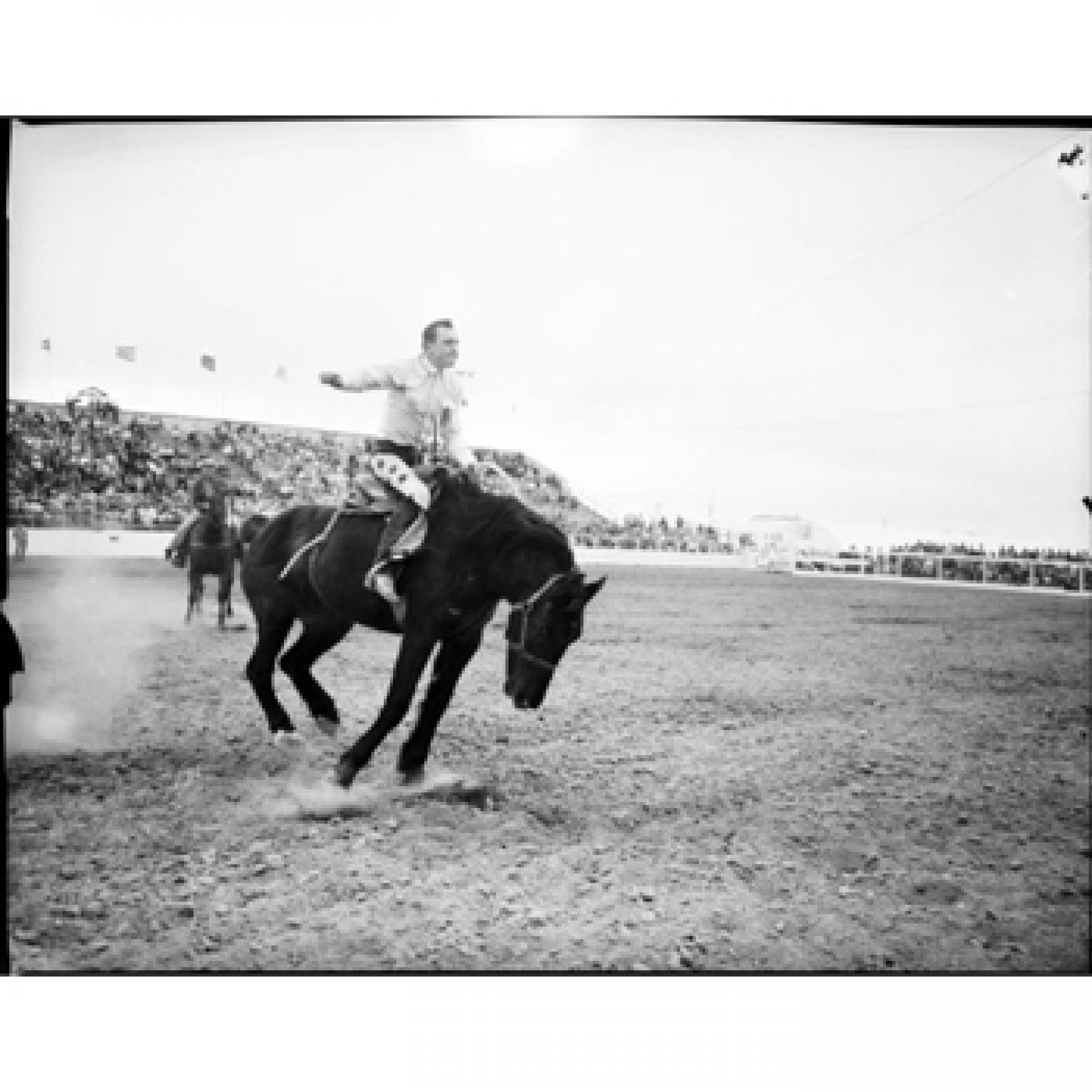 """""""1957 Rodeo"""" by Jack Sheaffer is among those in the newly digitized collection hosted by the UA's Special Collections."""