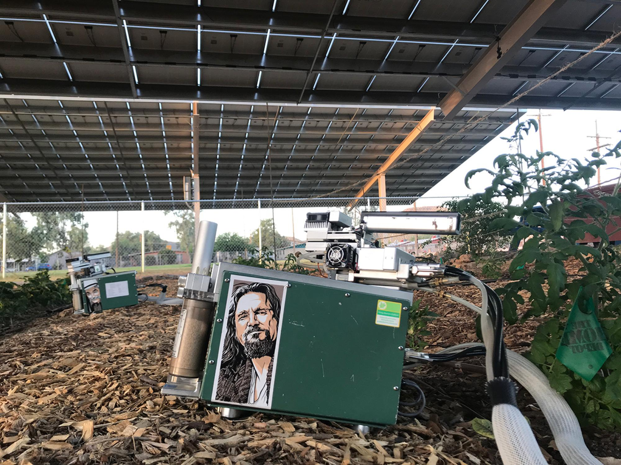 Instruments were used to continually monitor several key factors, including incoming light levels, air temperature, relative humidity, soil surface temperature and soil moisture.