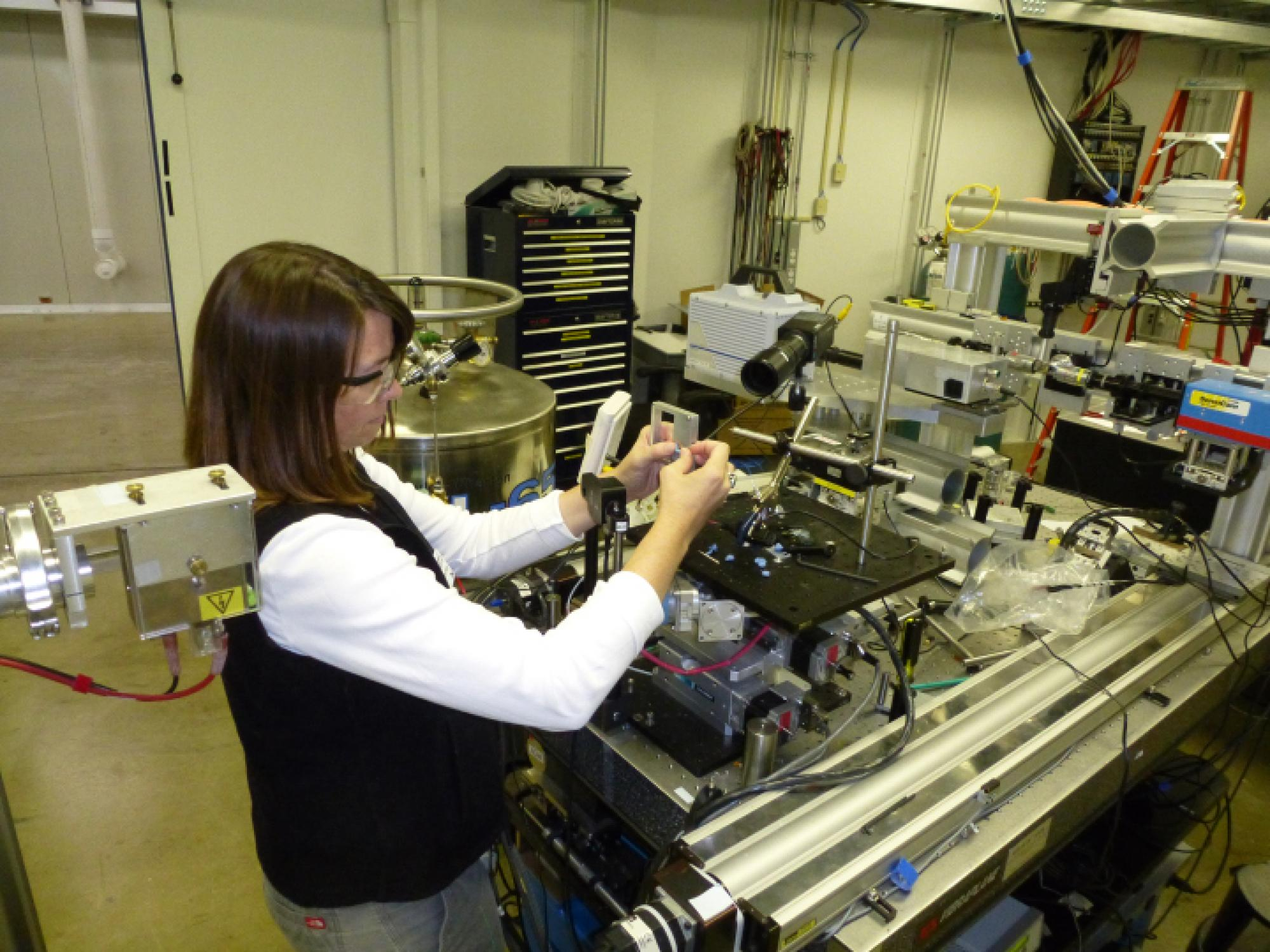Wendy Moore prepares an experiment to study bombardier beetles' blasting sequence with high-powered X-rays at Argonne National Laboratory.