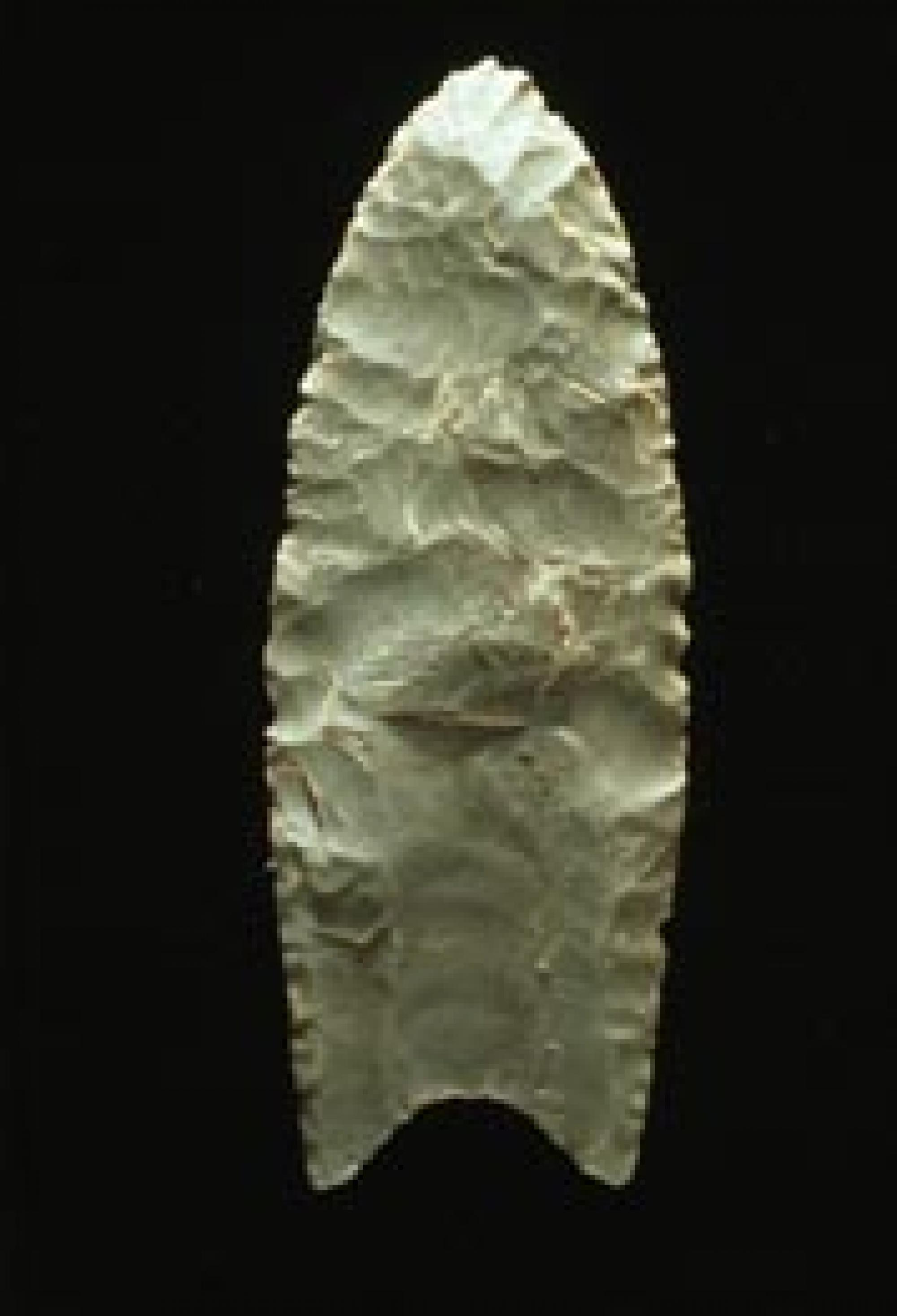 Example of a Clovis fluted blade.