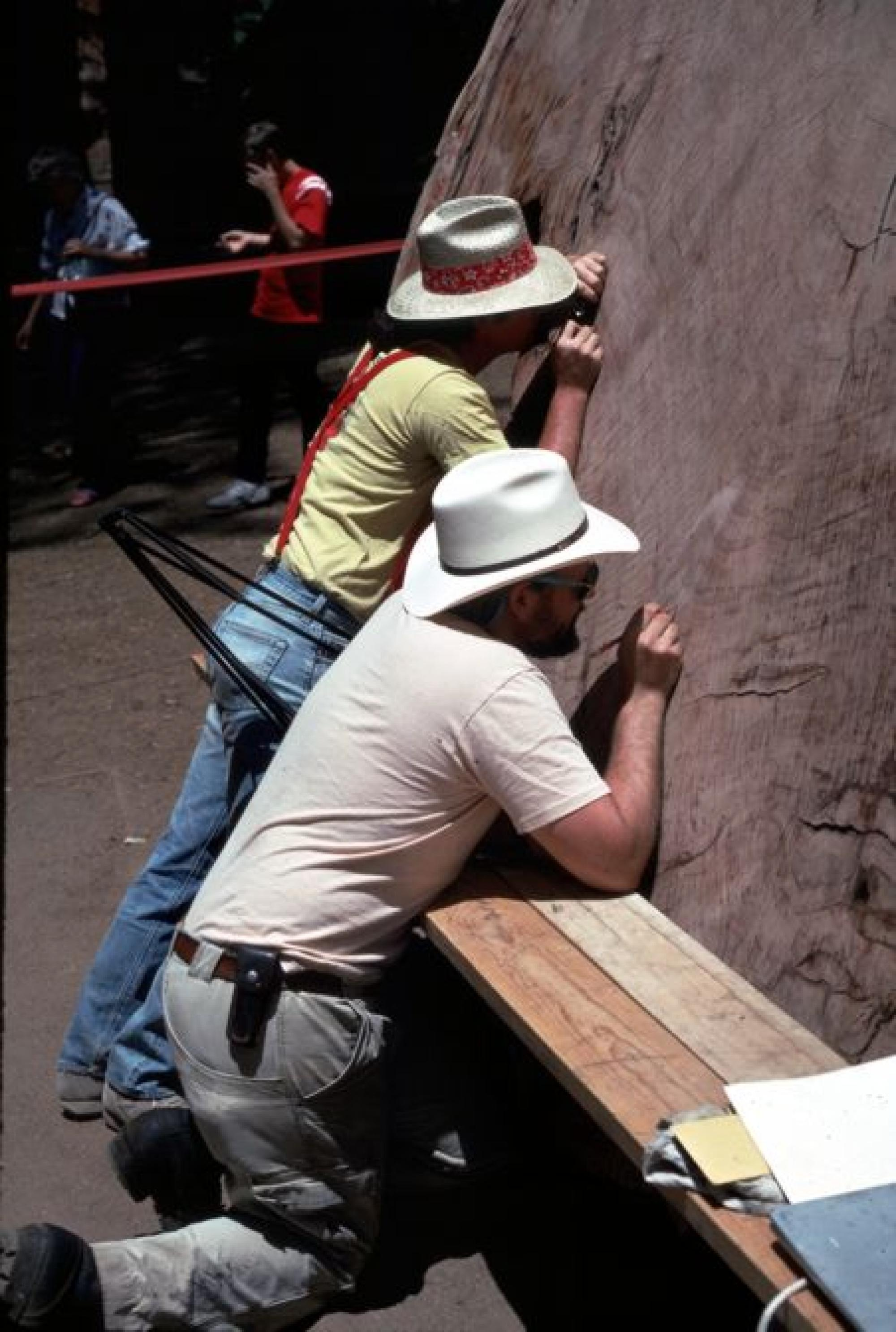 Researchers Peter Brown and Tom Swetnam dating the tree-rings and fire scars on a cross-section of a giant sequoia tree displayed near the General Sherman Tree in Sequoia National Park.
