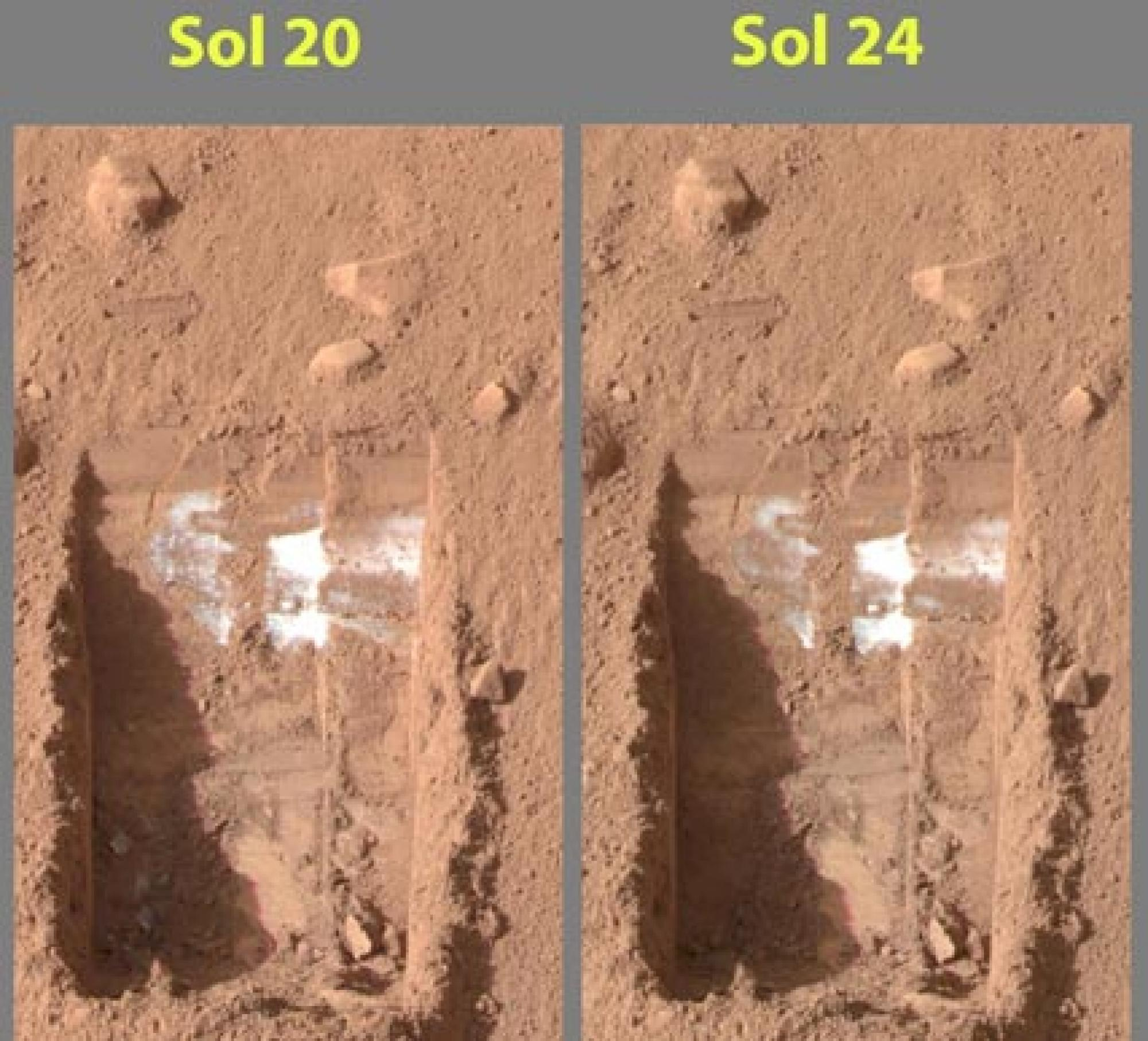These color images were acquired by NASA's Phoenix Mars Lander's Surface Stereo Imager on the 21st and 25th days of the mission, or Sols 20 and 24 .