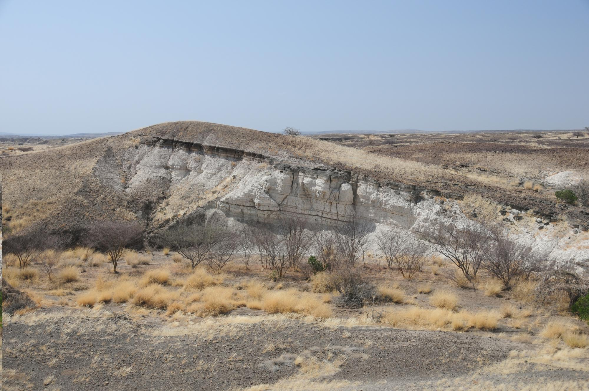 Lake deposits that are 3.5 million years old are exposed in outcrops near one of the northern Awash River Valley drill sites in Ethiopia. Drill cores here will document the environmental conditions in which Lucy and other members of her species  evolved,