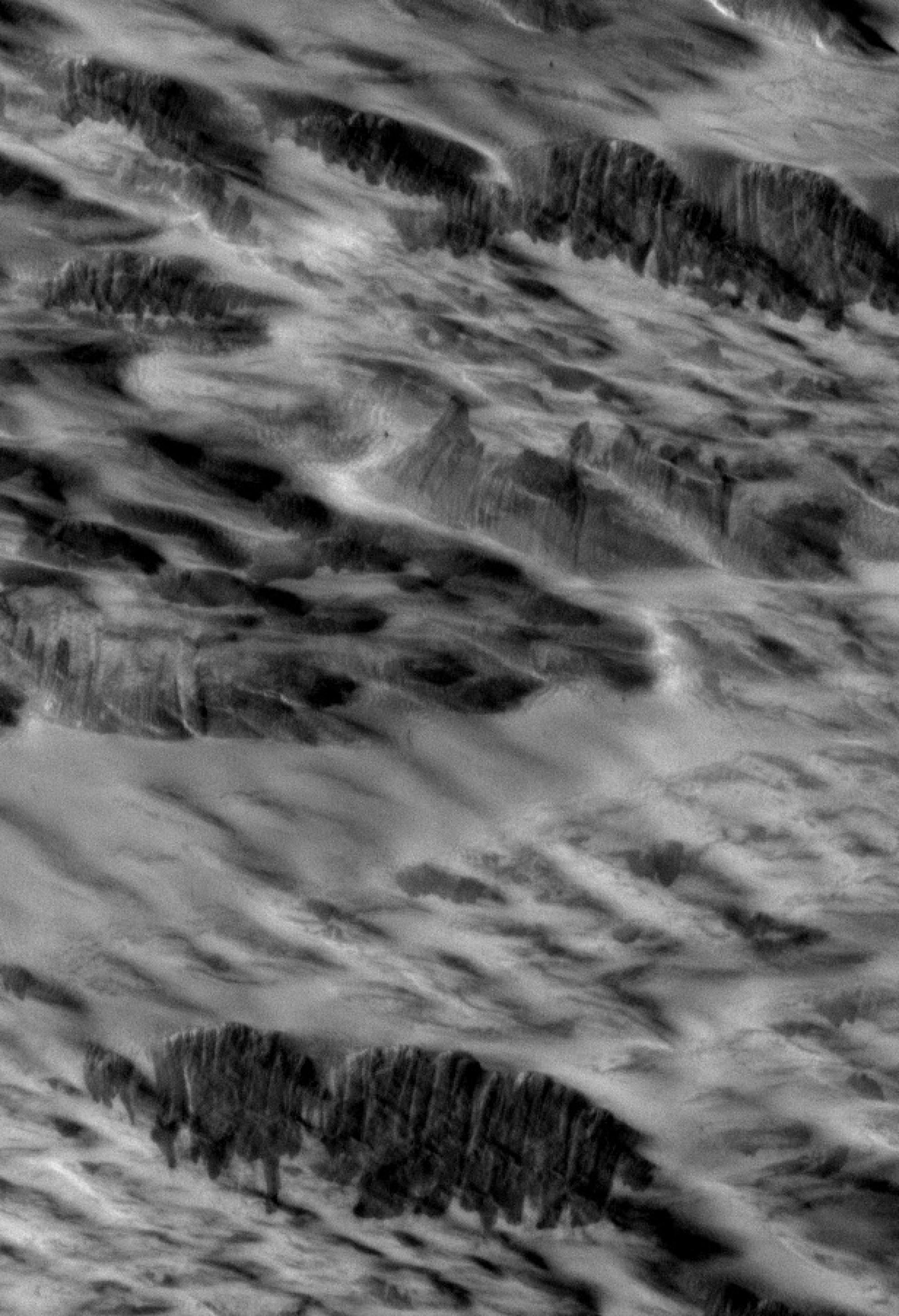 Close-up of Martian terrain with dark streaks interpreted as avalanches blasted by shockwaves from a meteorite impact.