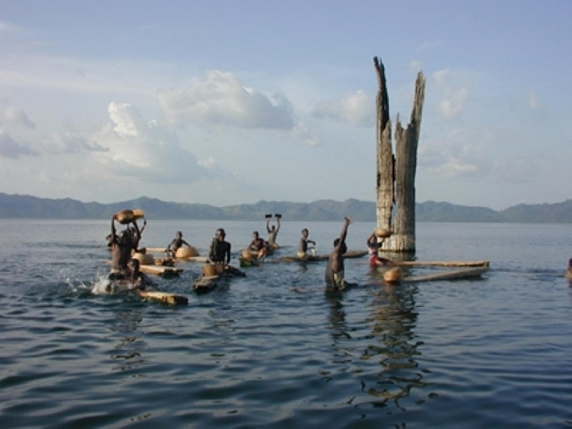 Boys from nearby villages practice traditional fishing methods on Lake Bosumtwi. Large tropical trees submerged in 15-20 meters of water provide evidence that severe, long-lasting droughts occurred just a few centuries ago.