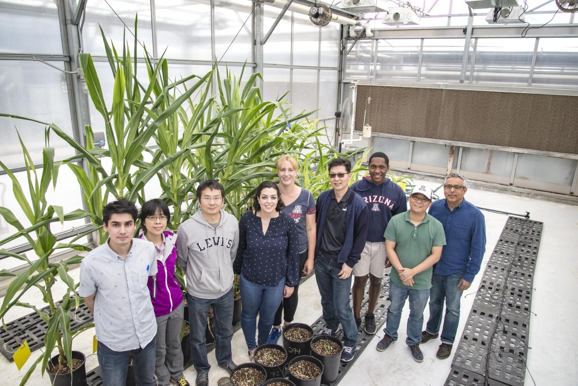 The Yadegari Group, from left: Syed Ali Shareef, Shanshan Zhang, Guosheng Li, Daniela Gutierrez, Patricia Ramsay, Choon-Hwan Ryu, Pierce Longmire, Junpeng Zhan and Ramin Yadegari, principal investigator.