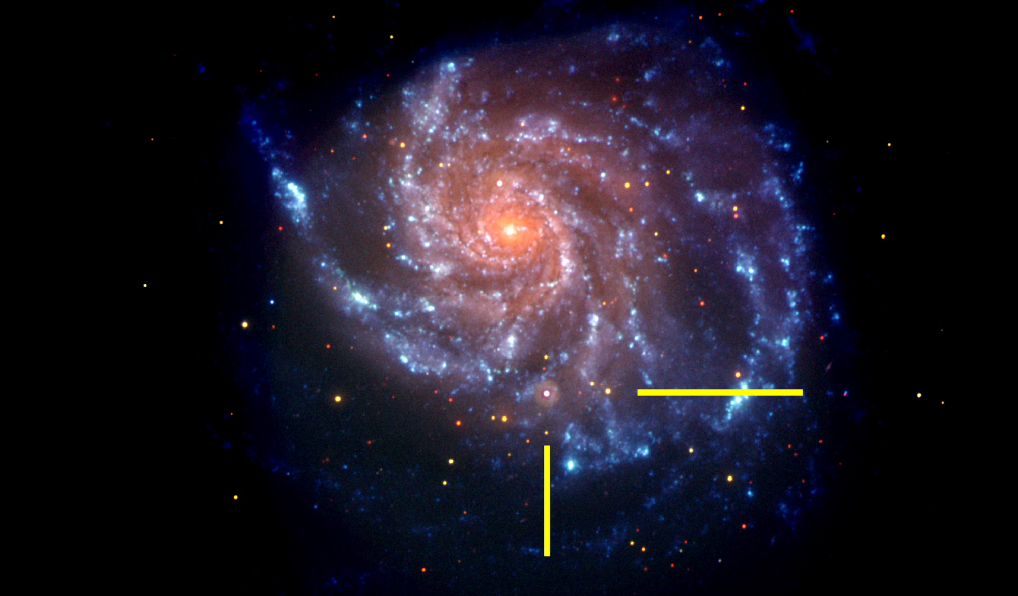 That same galaxy in a NASA Swift image, with bars indicating the location of supernova SN 2011fe. The Swift  image is a false-color image with UV emission blue and optical emission red.