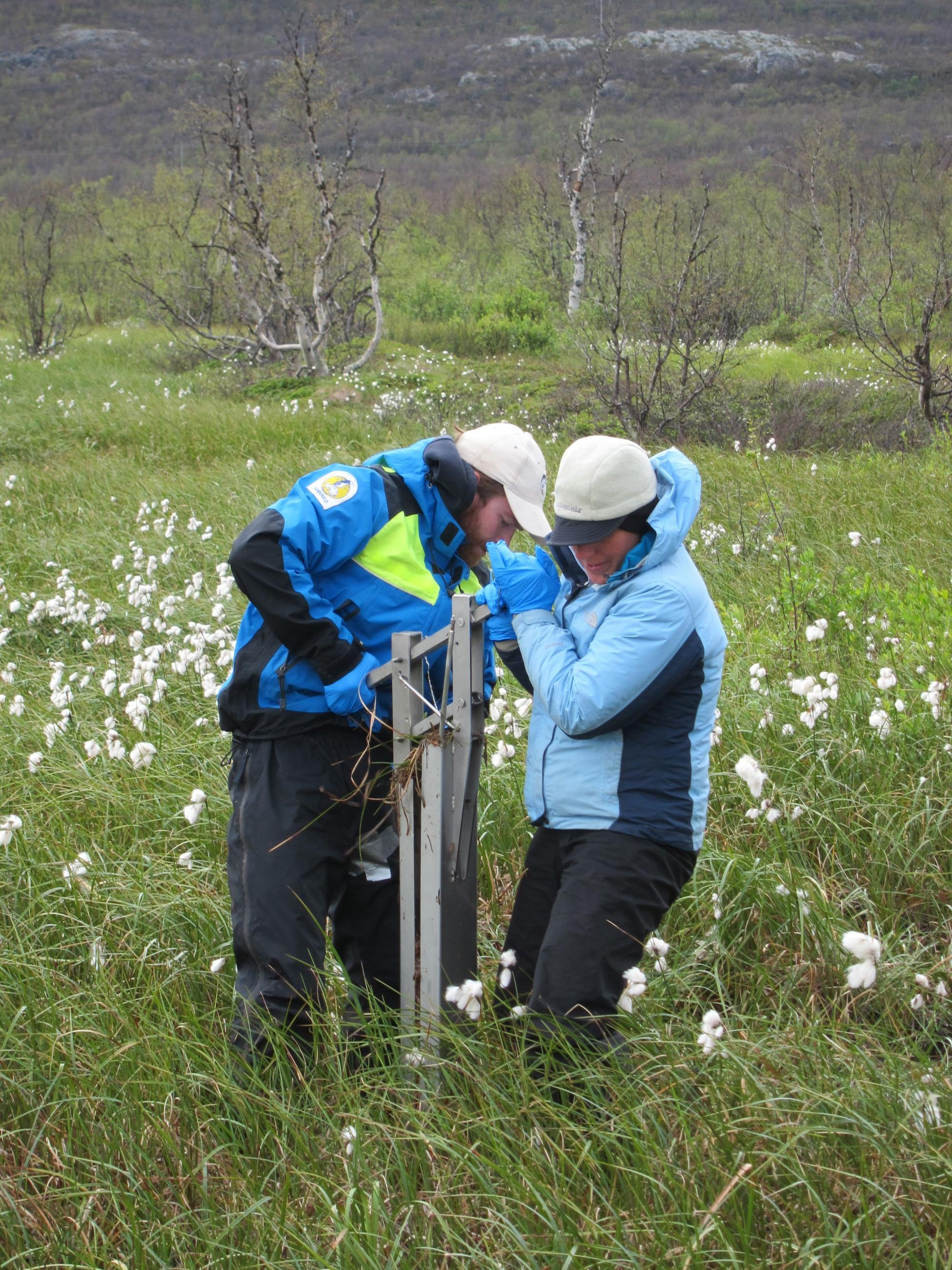 To study microbes in the soil, study lead author Carmody McCalley  and Tyler Logan of the Swedish Polar Research Secretariat drive cores into the ground ...