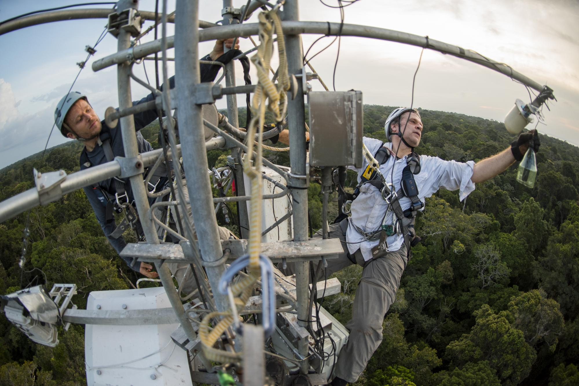 UA researchers Scott Saleska  and Neill Prohaska work at the top of a flux tower high above the forest canopy.