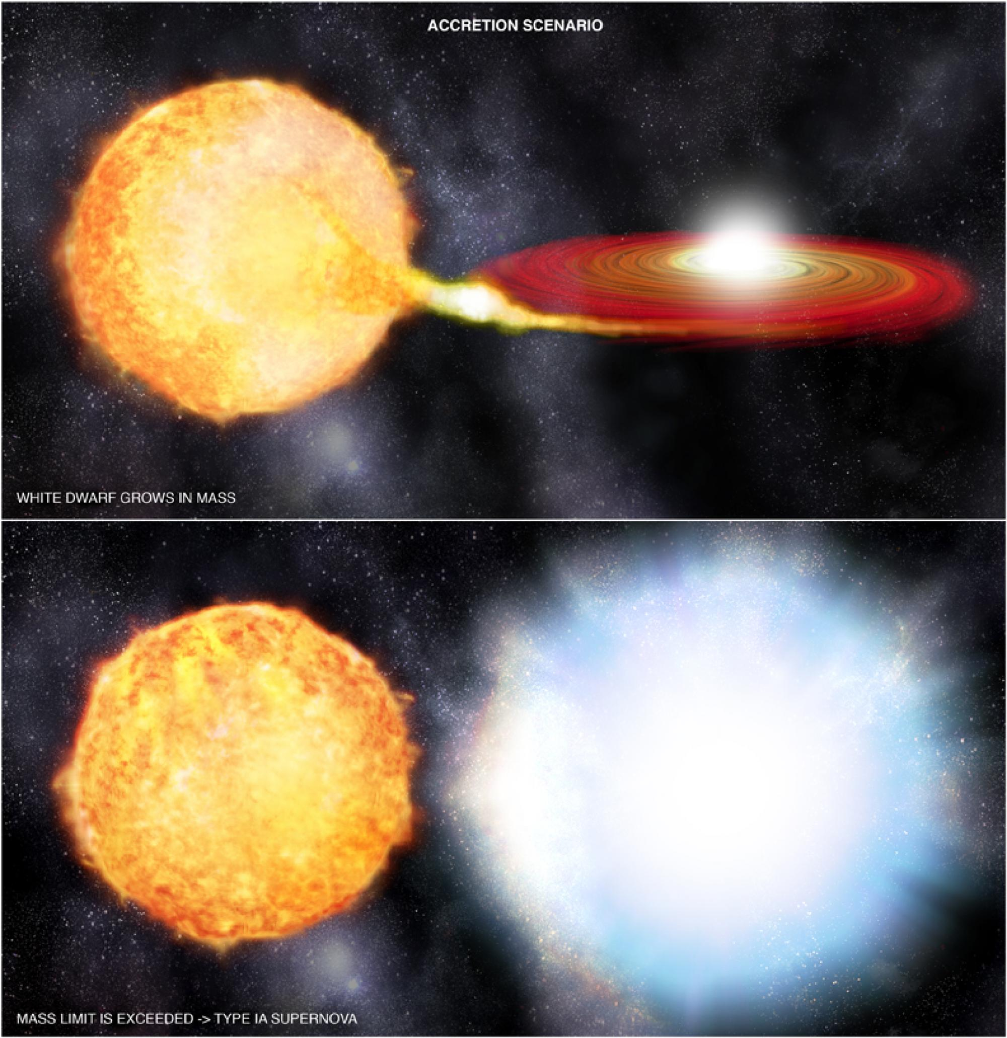 In the second scenario, which is likely the one that triggered the supernova described in this study, gas is being pulled from a sunlike star onto a white dwarf via a red disk. When the amount of material accreted onto the white dwarf causes the weight li