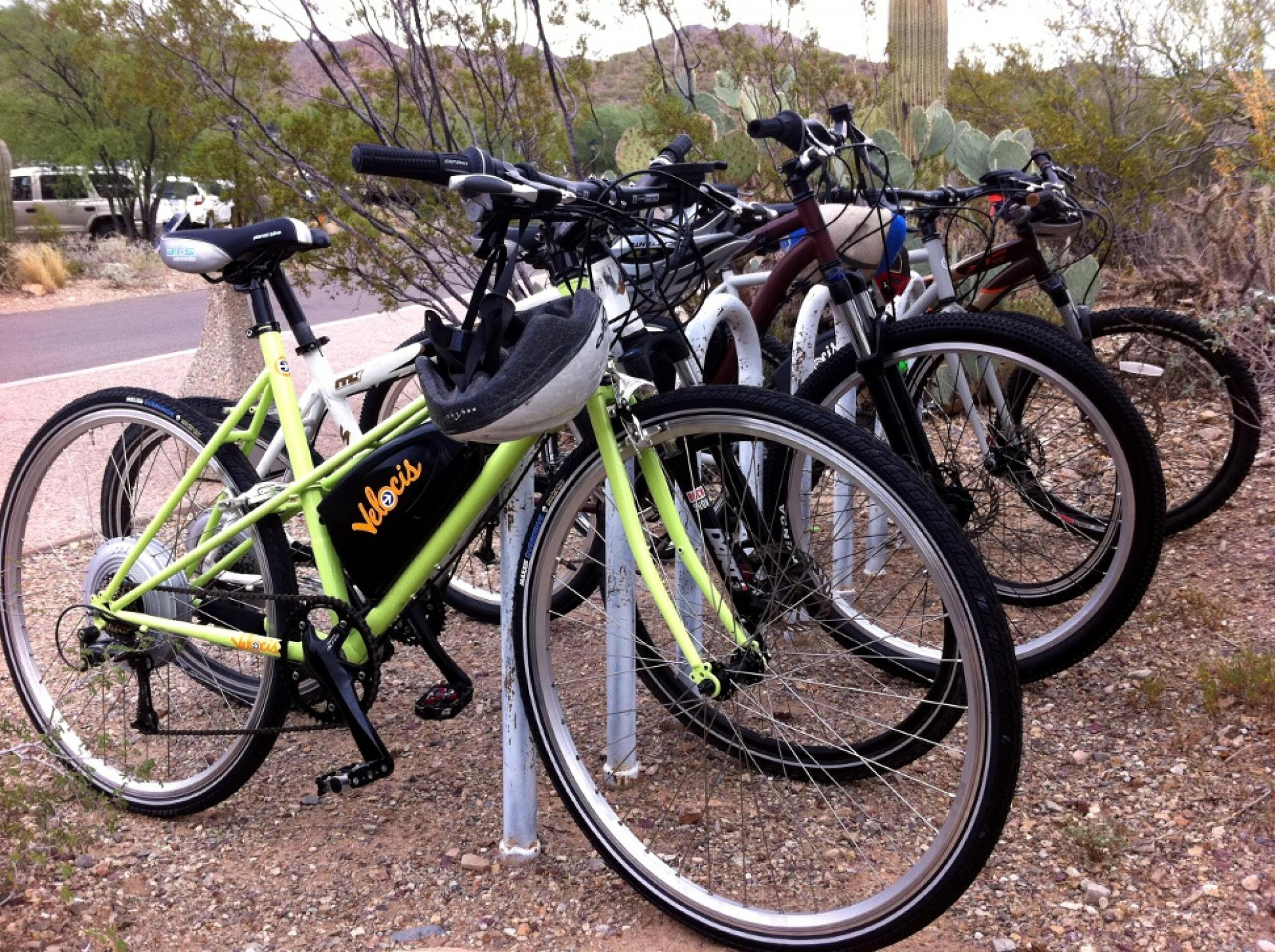 Stylish, trendy and efficient, Velocis bicycles line up in a campus bicycle rack. Bantock and Hedberg are hoping the bikes will help reduce traffic around campus and promote bicycling instead of driving.