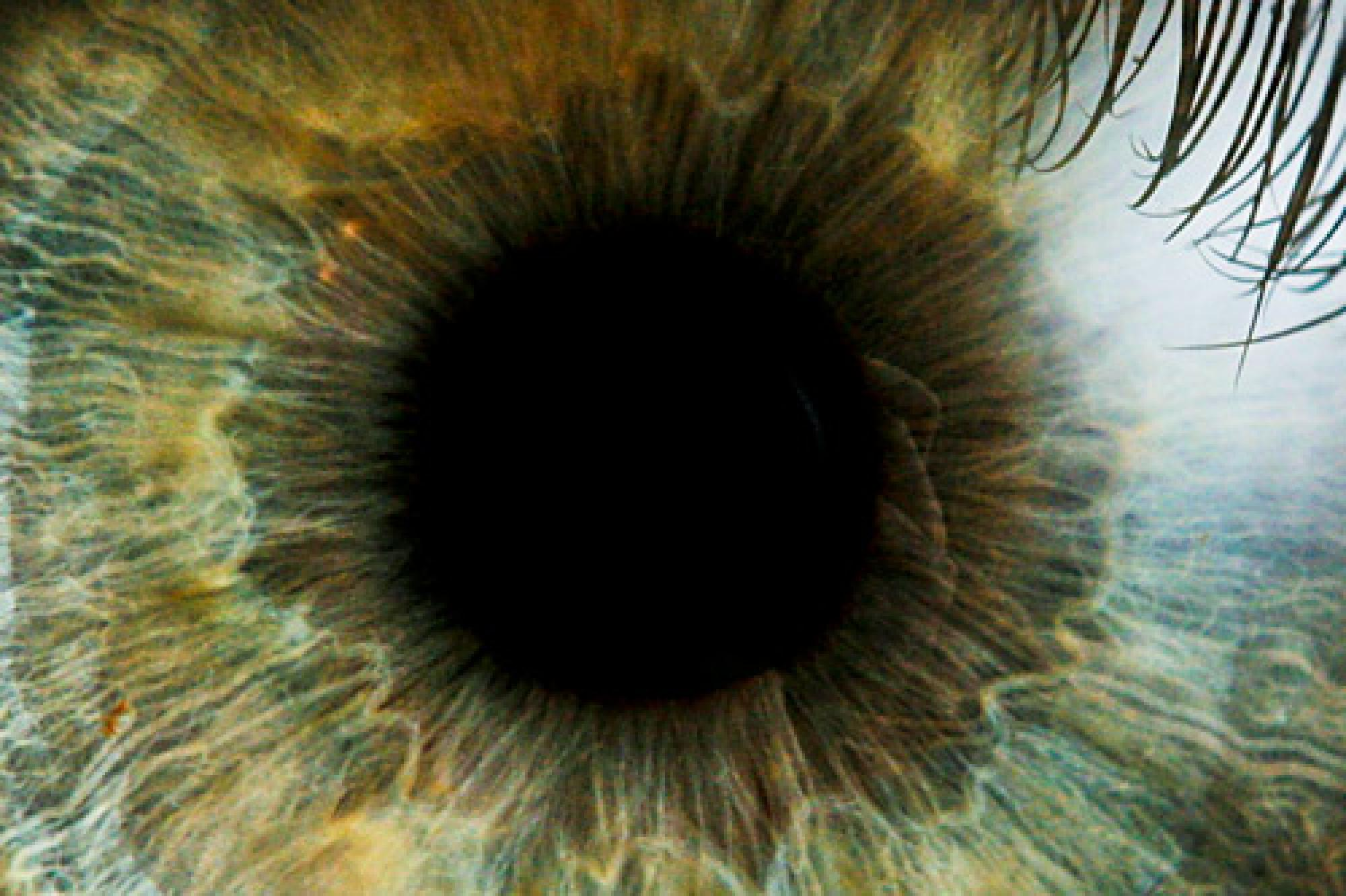 According to the Glaucoma Research Foundation, glaucoma is a leading cause of blindness, there is no cure, everyone is at risk, and there may be no symptoms to warn you. More than 4 million Americans have glaucoma but only half know they have it.