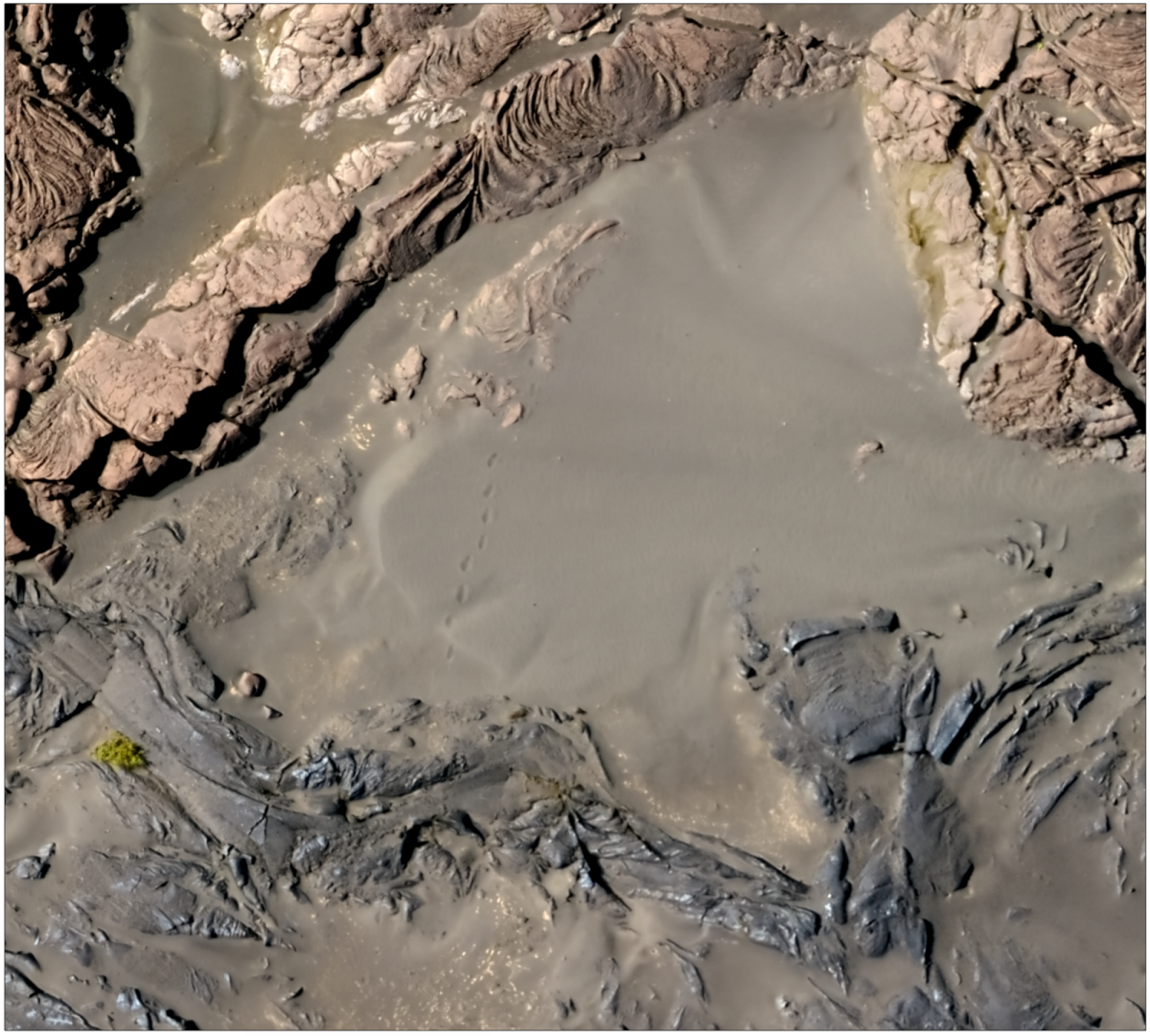 A high-resolution orthophoto of the margin of the December 1974 flow. If you look carefully, you can see footprints in the sand leading away from the edge of the lava flow.