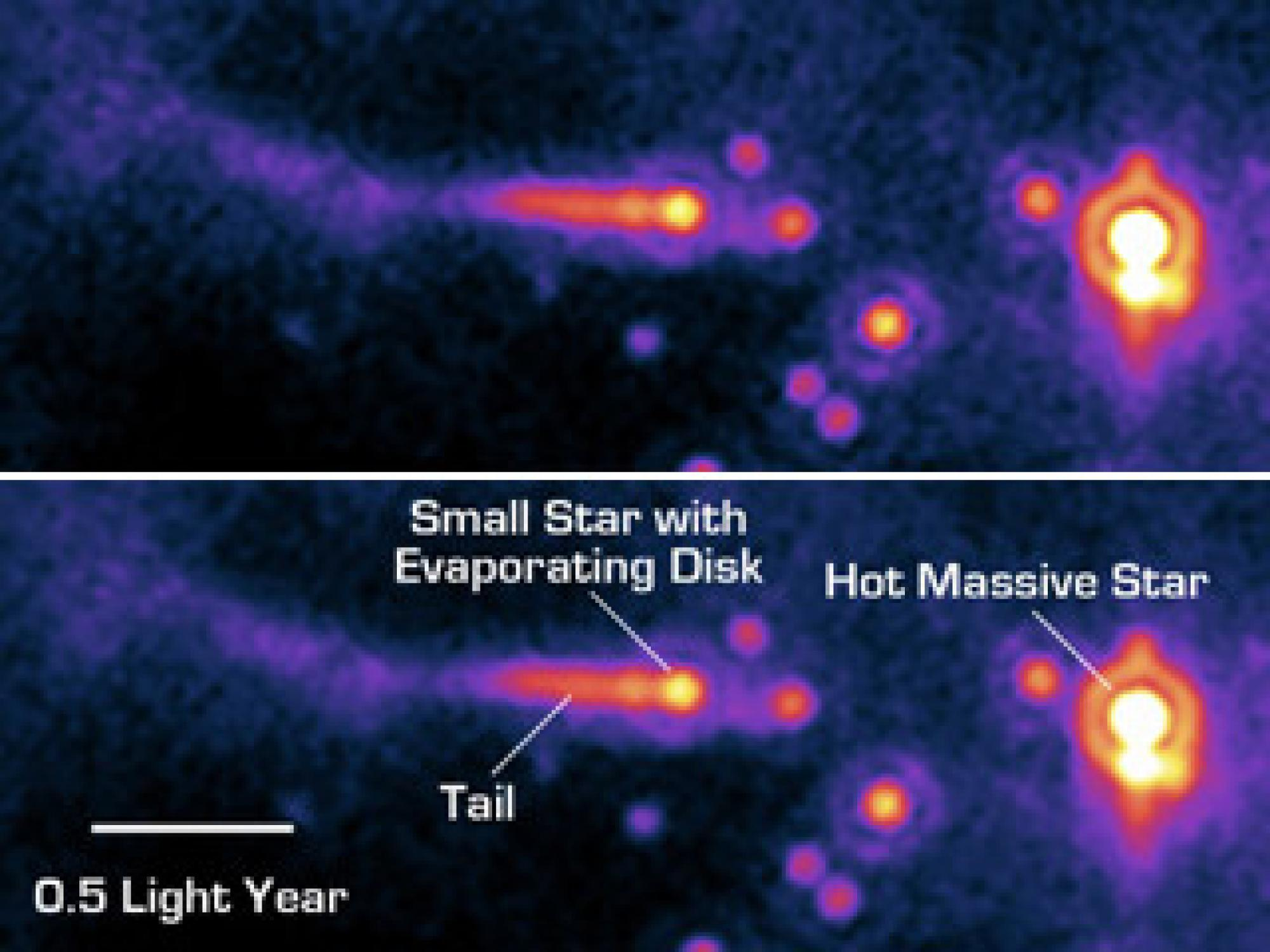 A Star's Close Encounter --The potential planet forming disk  of a sun-like star is being violently ripped away by the powerful winds of a nearby hot O-type star in the upper image, from NASA's Spitzer Space Telescope.  Text labels have been ad