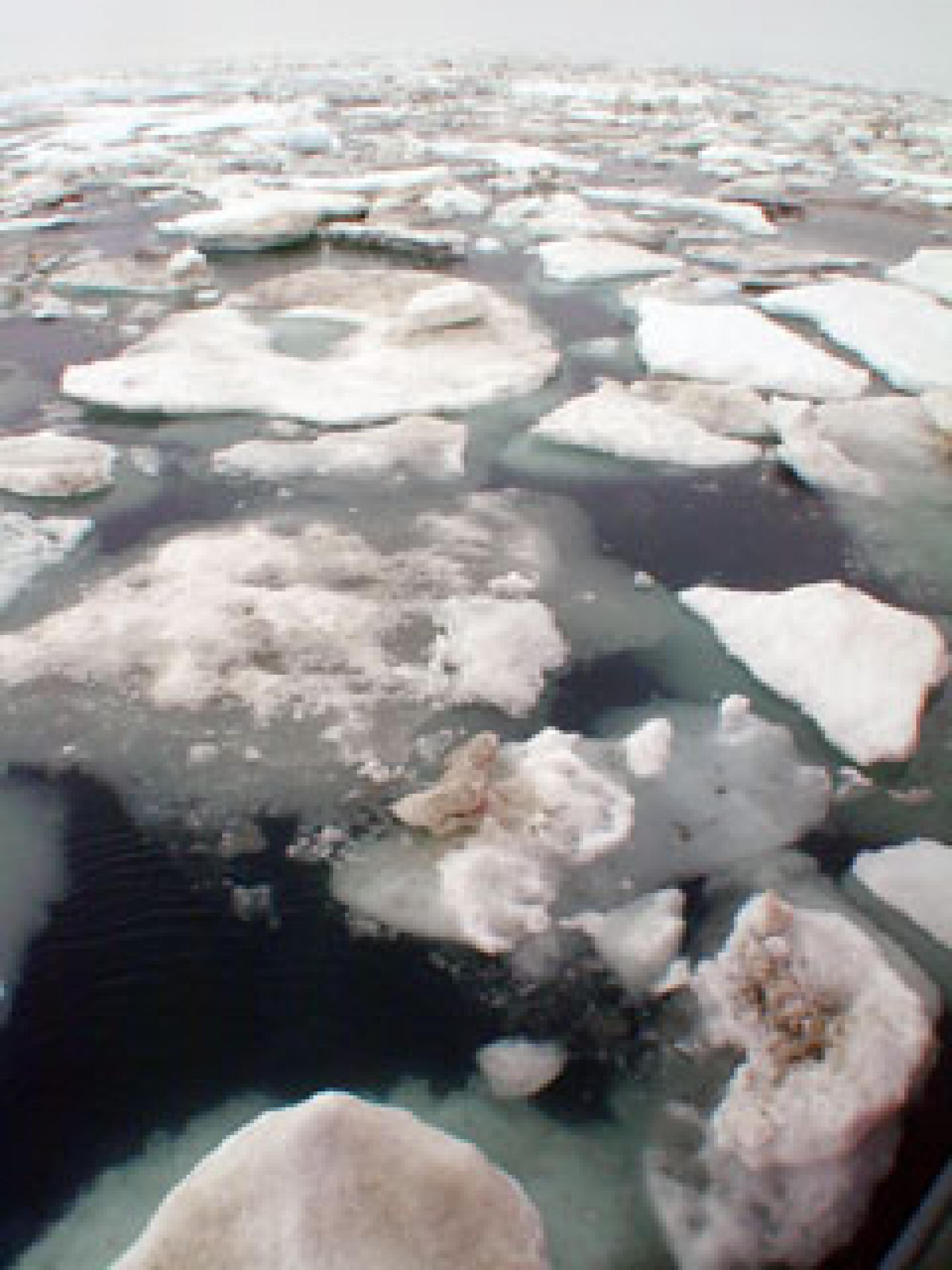 Melting Arctic sea ice is some evidence that climate is changing.