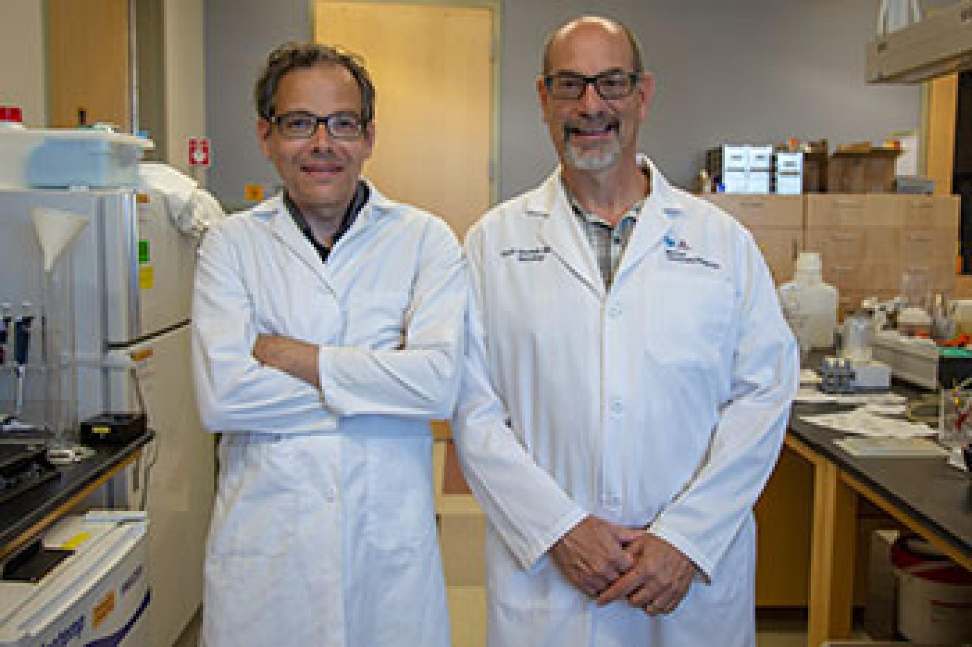 Neuroscientist Torsten Falk and neurologist Scott Sherman are teaming up to study the use of ketamine in patients with Parkinson's disease.