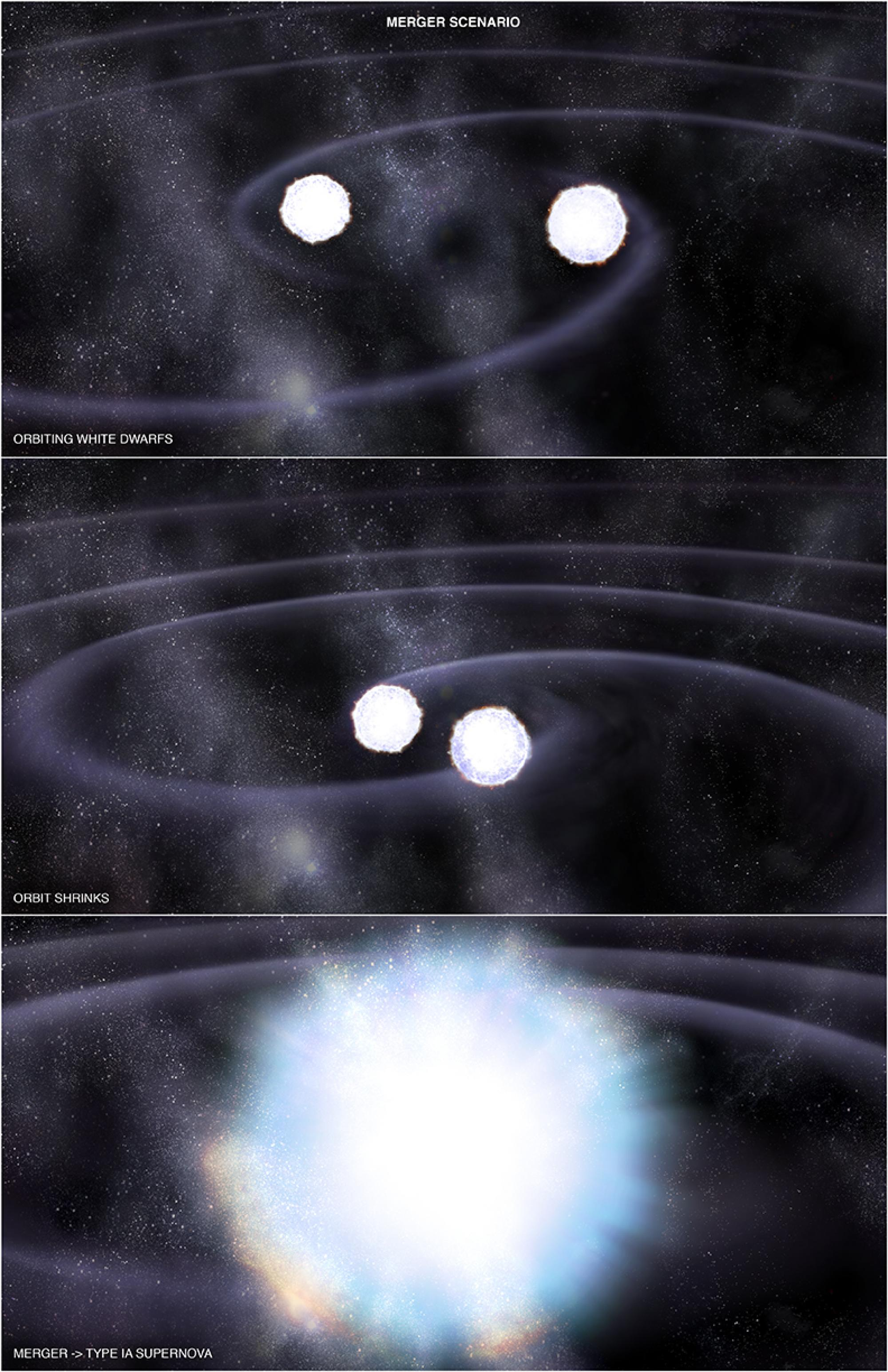 In one of two possible scenarios leading to a Type Ia supernova, two white dwarf stars orbit each other and lose energy via gravitational radiation, eventually resulting in a merger between the two stars. Because the total mass of this merger exceeds the