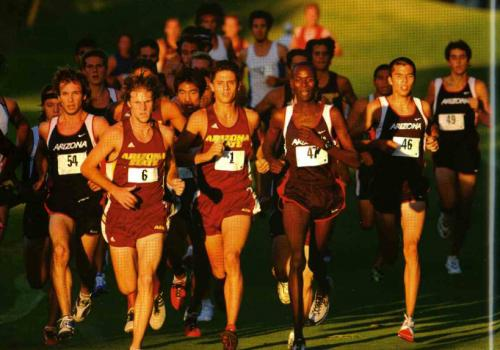 The UA men's cross country team competes against Arizona State.