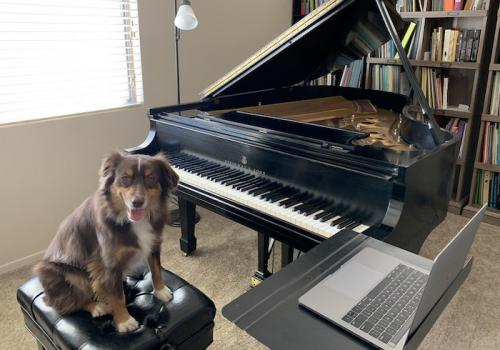 Teaching assistant  is ready to take over online piano lessons. – Fanya Lin, assistant professor in the School of Music