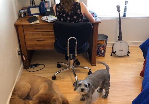 My husband  captured the attached photo of my new co-workers, Gozer and Wembley, and me. I was setting up my next Zoom meeting and did not realize my dog posse had camped out behind me. – Erin Paradis, lecturer, Eller College of Management