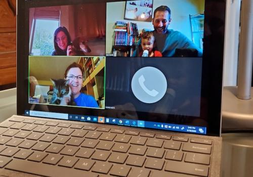 Like many organizations, the University of Arizona Center for Innovation has gone primarily virtual. Still, the productivity never stops! During a virtual team meeting, we were joined by three new members of our startup support team. Nothing like cats, do