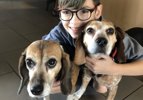 The human is my son, Leo, age 12. The little beagle on the left is Rosie, who we recently adopted from a medical research lab. The little beagle on the right is Shay, who moonlights as a car alarm.  – Romi Carrell Wittman, assistant professor and organiza