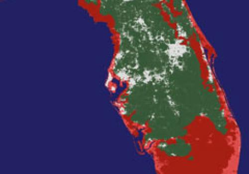 The red and pink areas in this image of the state of Florida indicate the areas that would be submerged if the sea level rose about 20 feet  Courtesy of Jeremy Weiss and Jonathan Overpeck, The University of Arizona.