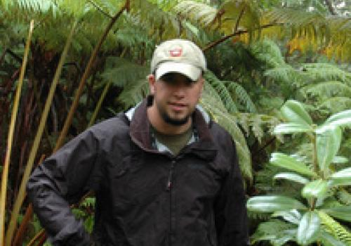 Richard Lapoint, a PERT postdoctoral researcher in the UA's department of ecology and evolutionary biology, combed the Hawaiian rainforest of Olaa looking for elusive fern-eating flies.