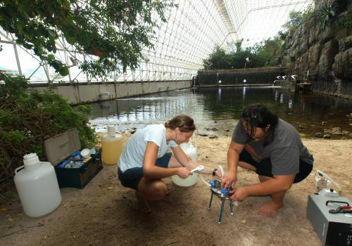 Melissa Duhaime , a postdoctoral fellow with Matthew Sullivan's group, extracts viruses from water samples taken from the Ocean Biome in the UA's Biosphere 2, together with lab technician Nina Gregory. The researchers take advantage of the Biosphere 2 Oce
