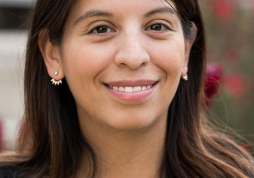 Christina Diaz received her Ph.D. in sociology with a concentration in demography from the University of Wisconsin, Madison, in 2015. Her research interests revolve around international migration, social stratification and processes of family formation.