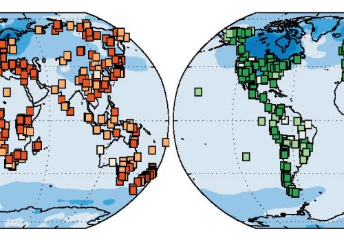 The world's vegetation has changed since the last ice age. The map on the left shows the changes in plant species and the map on the right shows changes in structure such as tundra becoming forest. The darker the squares the greater the change.