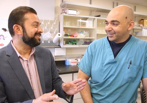 Rajesh Khanna , UA associate professor of pharmacology and senior author of the study, with Mohab Ibrahim, UA assistant professor of anesthesiology and pharmacology and lead author of the study, in the lab.